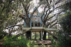 Abandoned Victorian Treehouse, South East Florida, USA
