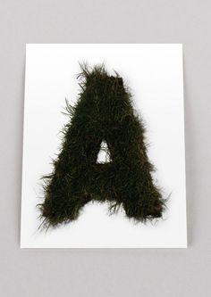 Autobahn grass typo