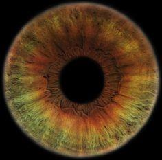 Portfolio | Special Projects « RANKIN #eyescapes #photography #rankin