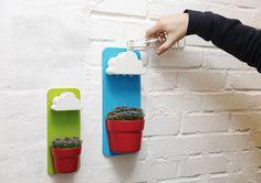 Water Rain on Plants