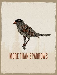 More Than Sparrows Poster | Flickr - Photo Sharing! #birds #posters #typography