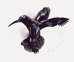 FFFFOUND! | Shotopop | Designcollector #black #bird