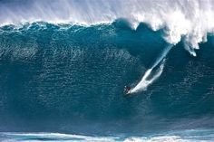 A Brief History of Surfing · Stampsy #surfing #surfer #huge #wave