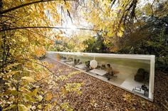 nice office #autumn #architecture #studio