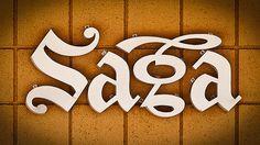 type novel #type #saga