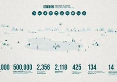 BBC Frozen Planet - Illustration (Personal) on the Behance Network