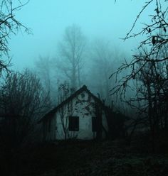 An Exquisite Paradox #house #haunted