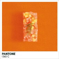 Pantone Food by Alison Anselot #inspiration #photography #food