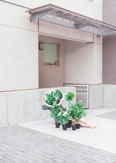 Yinchen Chen | PICDIT