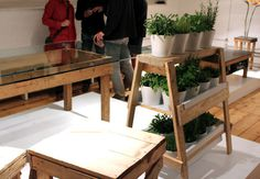 LDF_Fumi_group4 #wood #plants #green