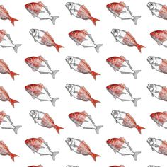 Fish Pattern by Maria Umiewska and Rehua Wilson