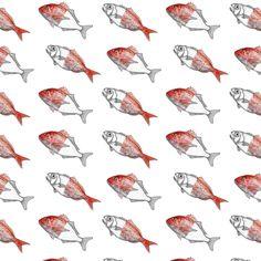 Fish Pattern by Maria Umiewska and Rehua Wilson