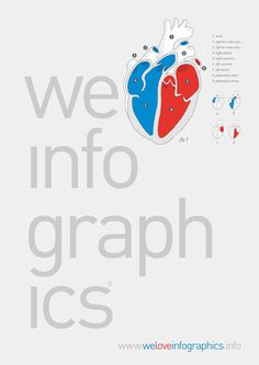 We Love Infographics by Ernesto Lago