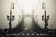 Into the fog - Imgur #photo