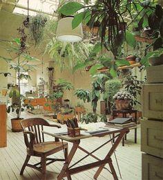 THE BRICK HOUSE #wood #light #plants #floor
