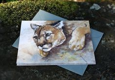 Snail's Pace Mountain Lion Illustration - Note Card #mountain #snails #cougar #lion #pace #stationery #paper
