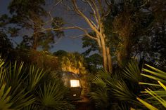 airstream trailer, florida at night #inspration #photography #art