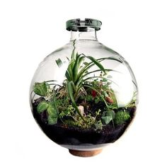 Fab.com | 50 Liter Bio-Dome #design #plants #home