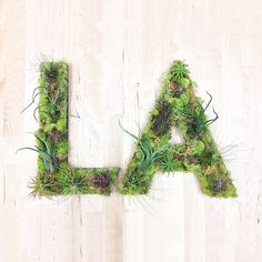 """LA"" Garden #sculpture #losangeles #airplants #hashtaggarden #gifts #succulents #la #art #artweheart #moss #green"