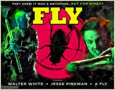 Fly #fly #breaking #bad