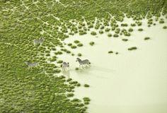 Zack Seckler #photography #aerial #landscape