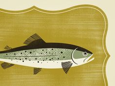 Dribbble - Trophy Fish by Brad Surcey #screen #print #fish #trophy