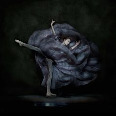 The Essence of Ballet by Ingrid Bugge
