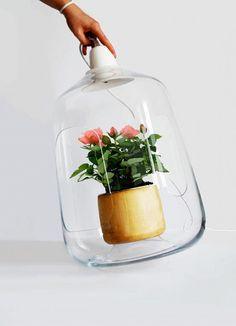 Milo – Lightovo #lamp #plant #flowers #wood #glass #hand #white #light
