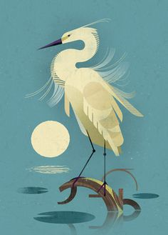 Animal Illustration by Dieter Braun