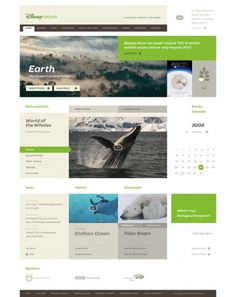 Disney - Disney Nature on the Behance Network #website