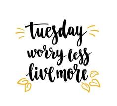 Happy Tuesday guys ✌🏻