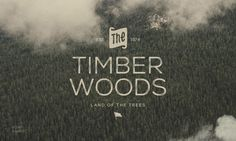 The Timber Wood land of the trees #nature #typeface #typography