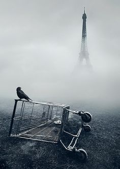 d r e a m on the Behance Network #white #fog #black #photography #and