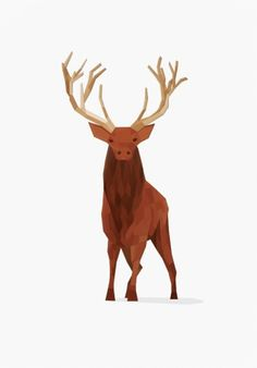 Deer Poster Design