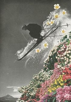 collage, wingspan: sarah eisenlohr #collage #ski