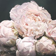 peonies 120 x120cm1.jpg #peony #flowers