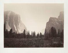 Yosemite. #yosemite #tree #gates #of #the #valley #sierra #mountains #california