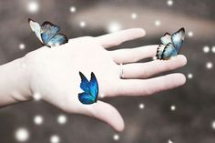 #surreal#butterfly#hand