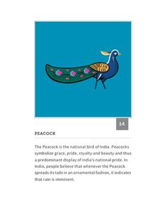 be3a13dd353ca3ea1692b64a0f33ecf5.jpg (474×605) #india #peacock