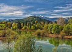 Nature Photography by Philip Kuntz