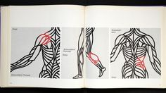 3541823038_278fda5ba6_b.jpg (1024×577) #swiss #muscles #design #books #body