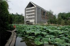 Tanghua Architect & Associates: Sichuan Fine Arts Institute Library of Huxi