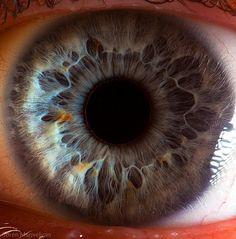 Your beautiful eyes on the Behance Network #eye #manvelyan #photography #suren #macro