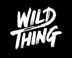 Wild Thing on Behance #wild #lettering #sanden #david