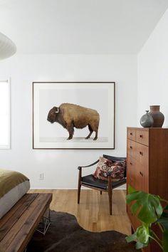 The Animal Print Shop #buffalo #bedroom