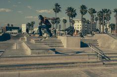 http://www.polarfox.com #palms #boarder #lomo #vintage #usa #skateboard #style
