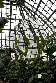 (1) Tumblr #form #sculpture #illusion #plants #mirror