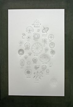 poster : a collection of radii : studio on fire