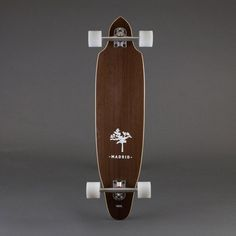 SQUID EXOTICS / 36"