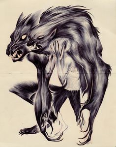 nataliehall #werewolf #fantasy #transformation #horror #illustration
